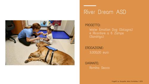 River Dream_Le scarpette delle Formichine